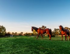 The-Horse-That-Guides-the-Way-Down-16-Fairway-at-the-Gravity-Golf-School-in-Springfield-Ohio-1024x680